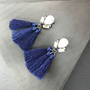 🆑 Tassel Earrings in Navy